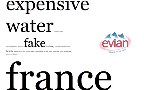 brand tags evian